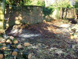 the site and the treesurgeons leavings 1